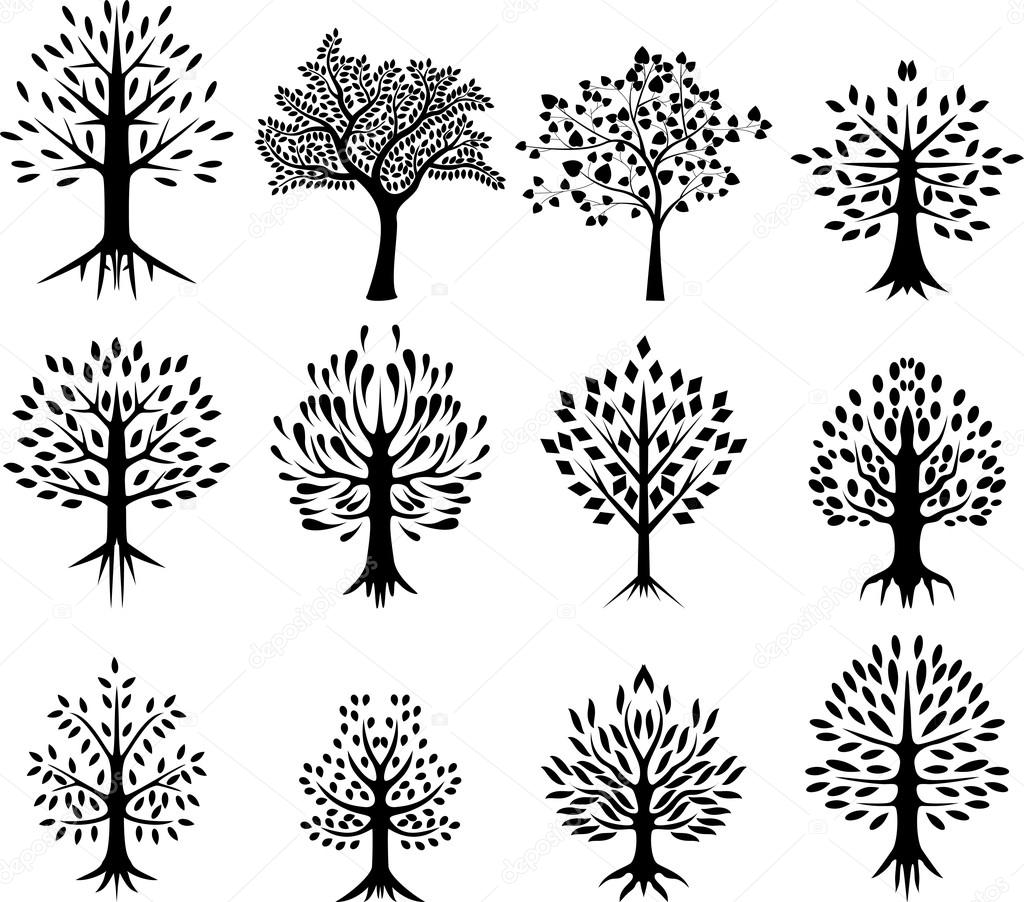 Collection Of Black Tree Silhouette Life Background