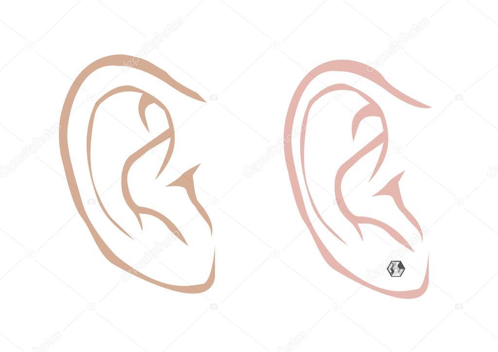 Clipart Eardrum Male And Female Ear With A Diamond Earring In Outline Art Style Editable Clip Art Stock Vector C Crystaleyemedia 115309058
