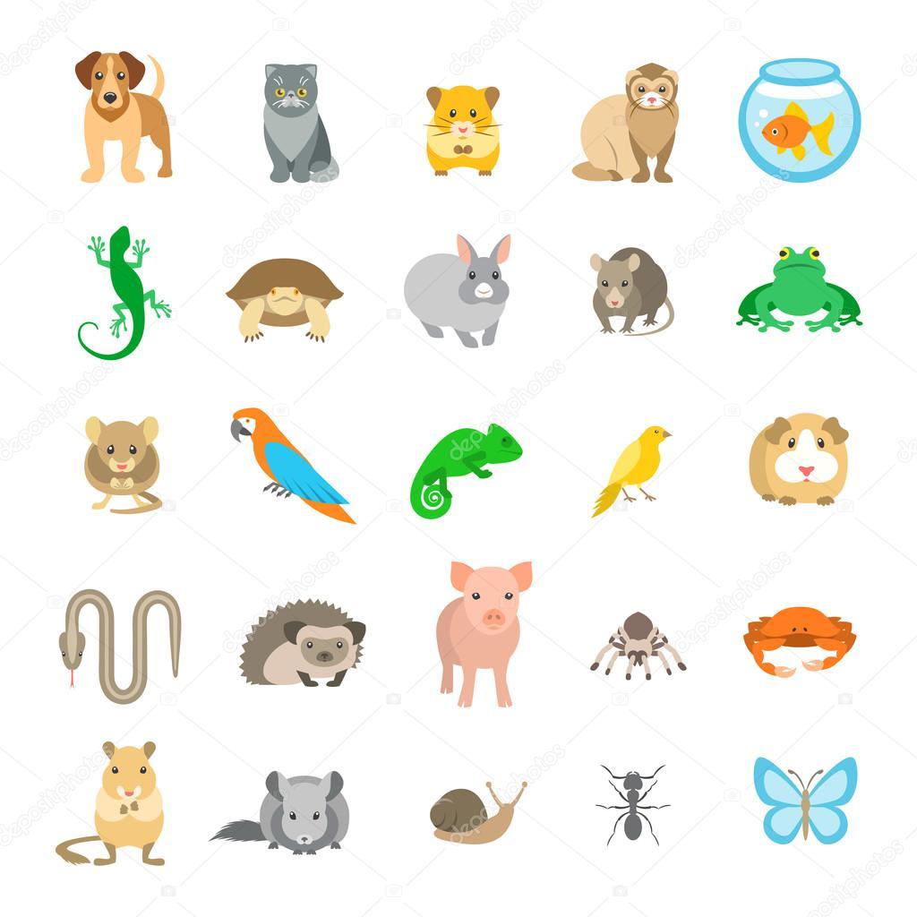 Animali Animali Domestici Piatto Colorato Icone Di Vettore