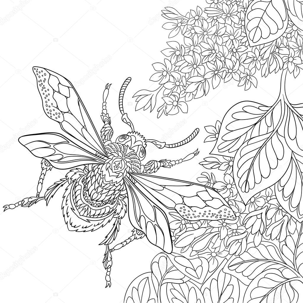 Zentangle Stylized Beetle Insect