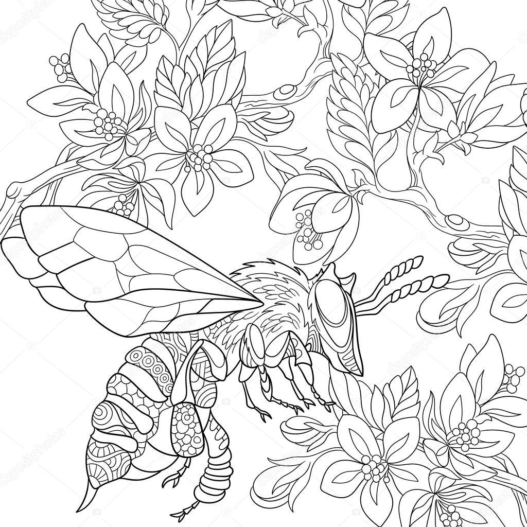 Zentangle Stylized Bee Insect