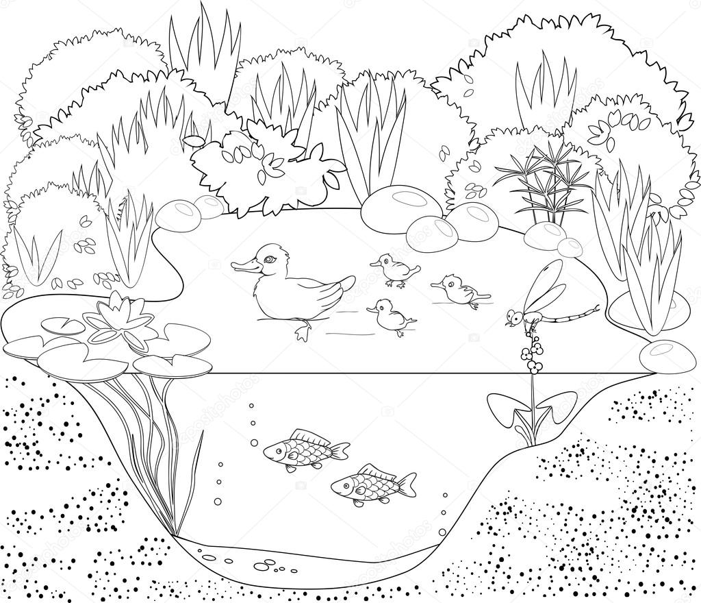 Pond Ecosystem Coloring Pages