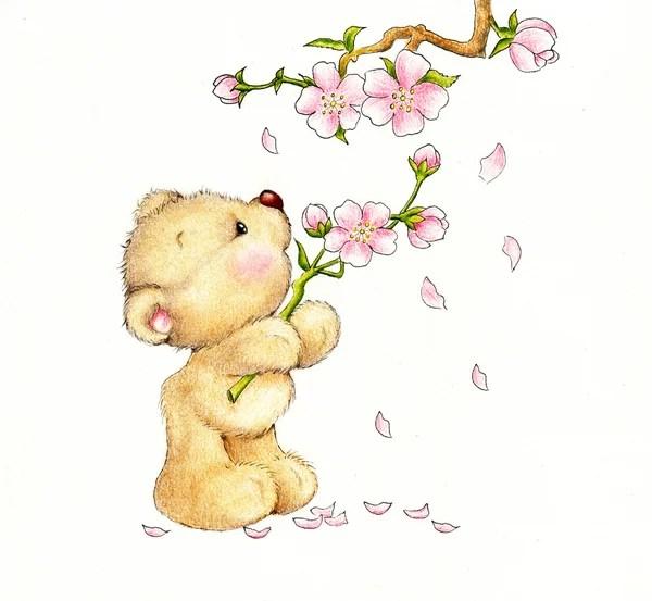 Teddy Bear Cartoon Stock Photos Royalty Free Teddy Bear