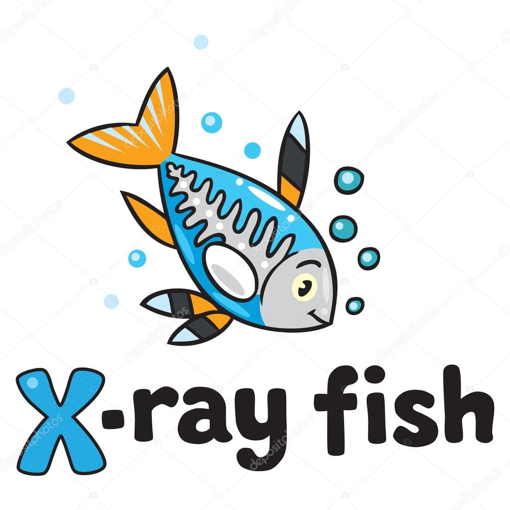 X Ray Fish For Abc Alphabet X