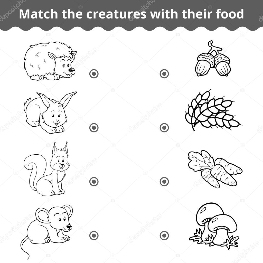 Matching Game For Children Forest Animals And Favorite