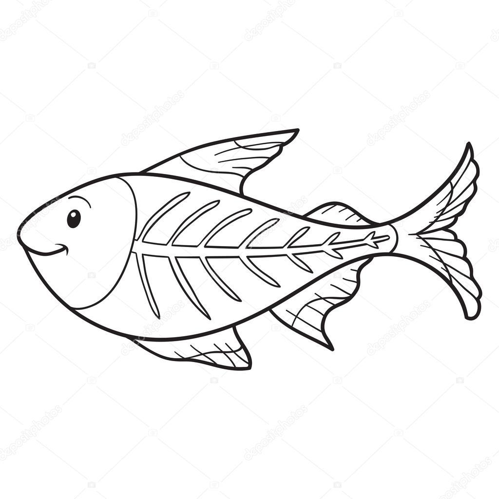 X Ray Fish Toy