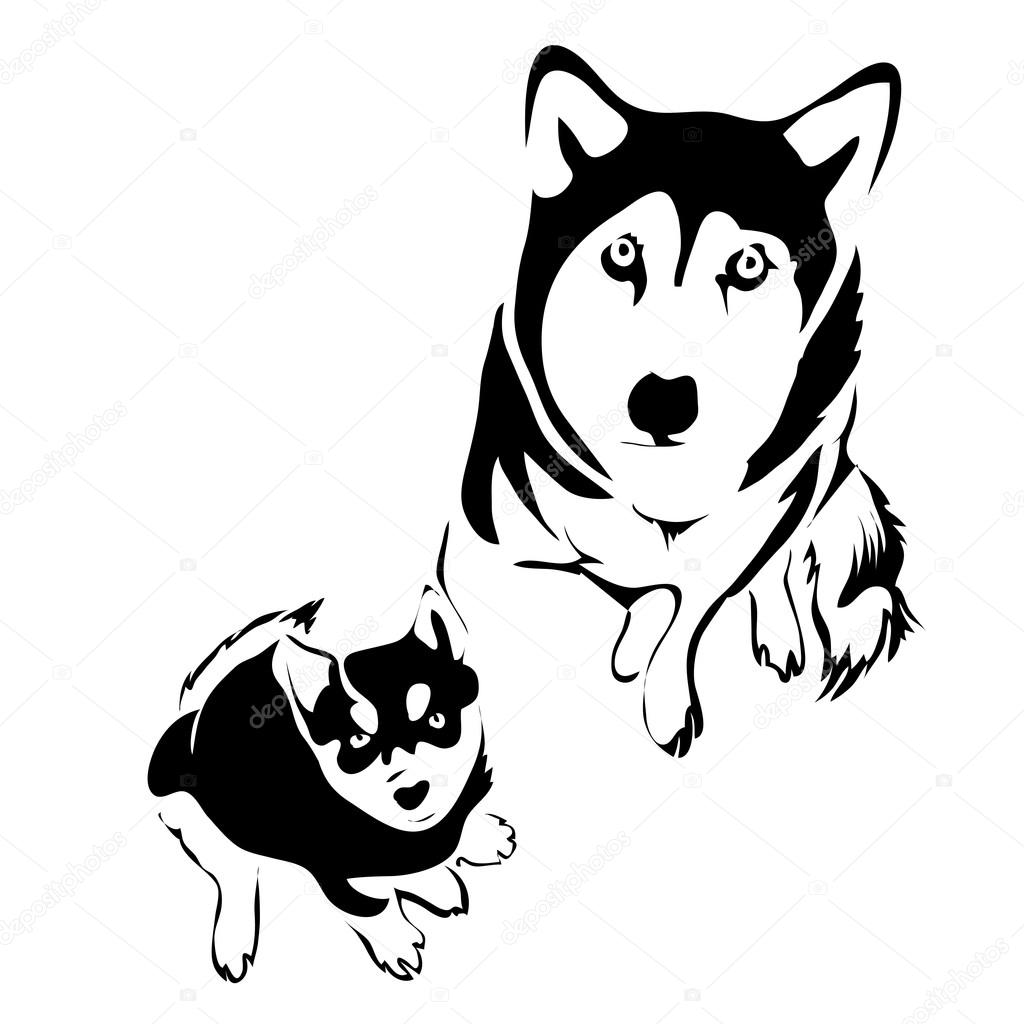 Outline Dog And Puppy Husky Top View Vector Template Can