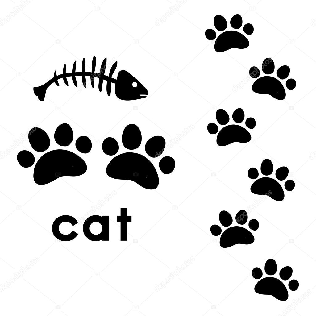 Cat S Paw Prints