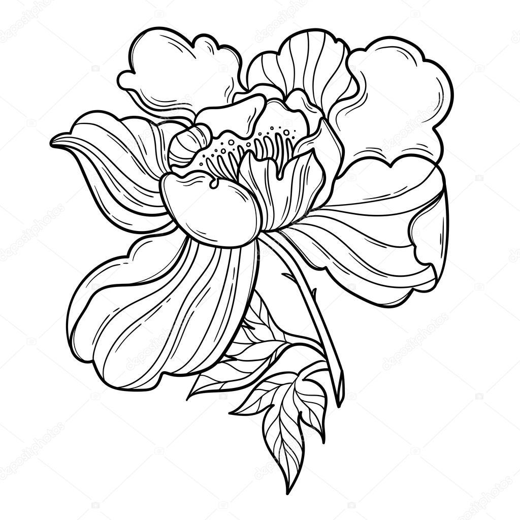 Fantasy Peony Flower With Leaf