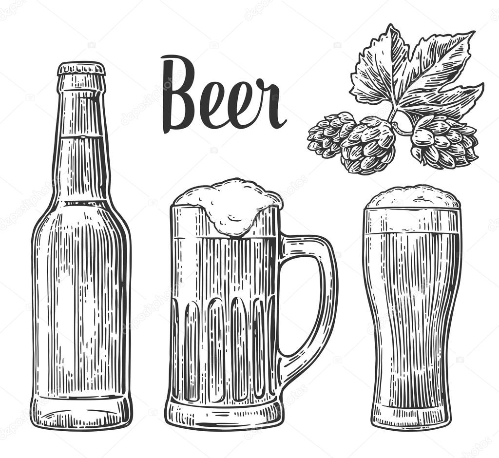 Beer Glass Mug Bottle Hop Vector Vintage Engraved