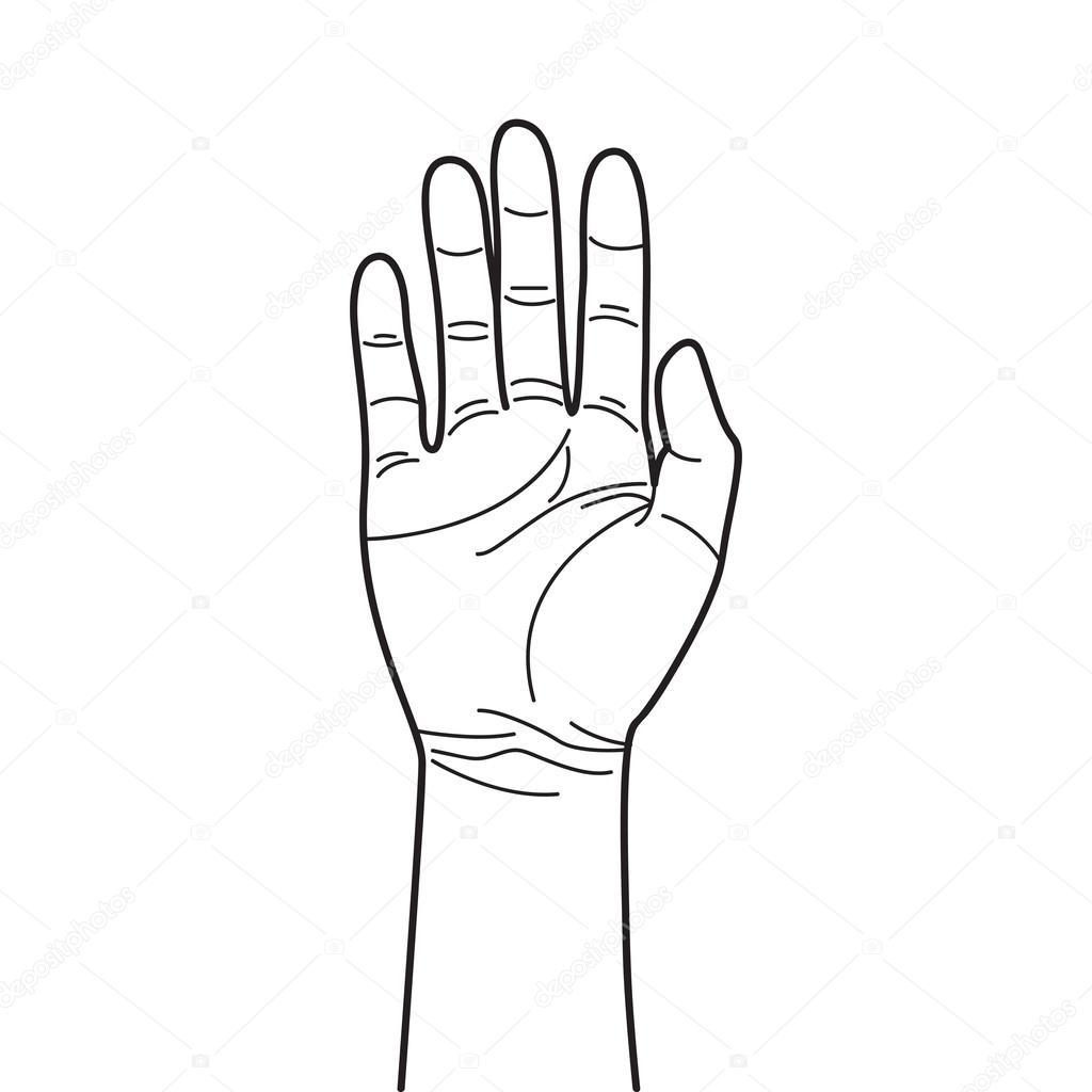 Simple Hand Line Art