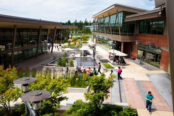 Área verde na sede da Microsoft, em Redmond.