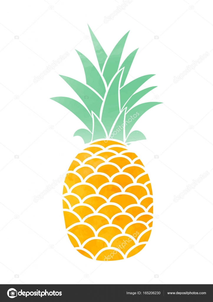 Watercolor Pineapple Vector Symbol Stock Vector