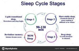 Diagram of Sleep Cycle Stages — Stock Photo © vaeenma