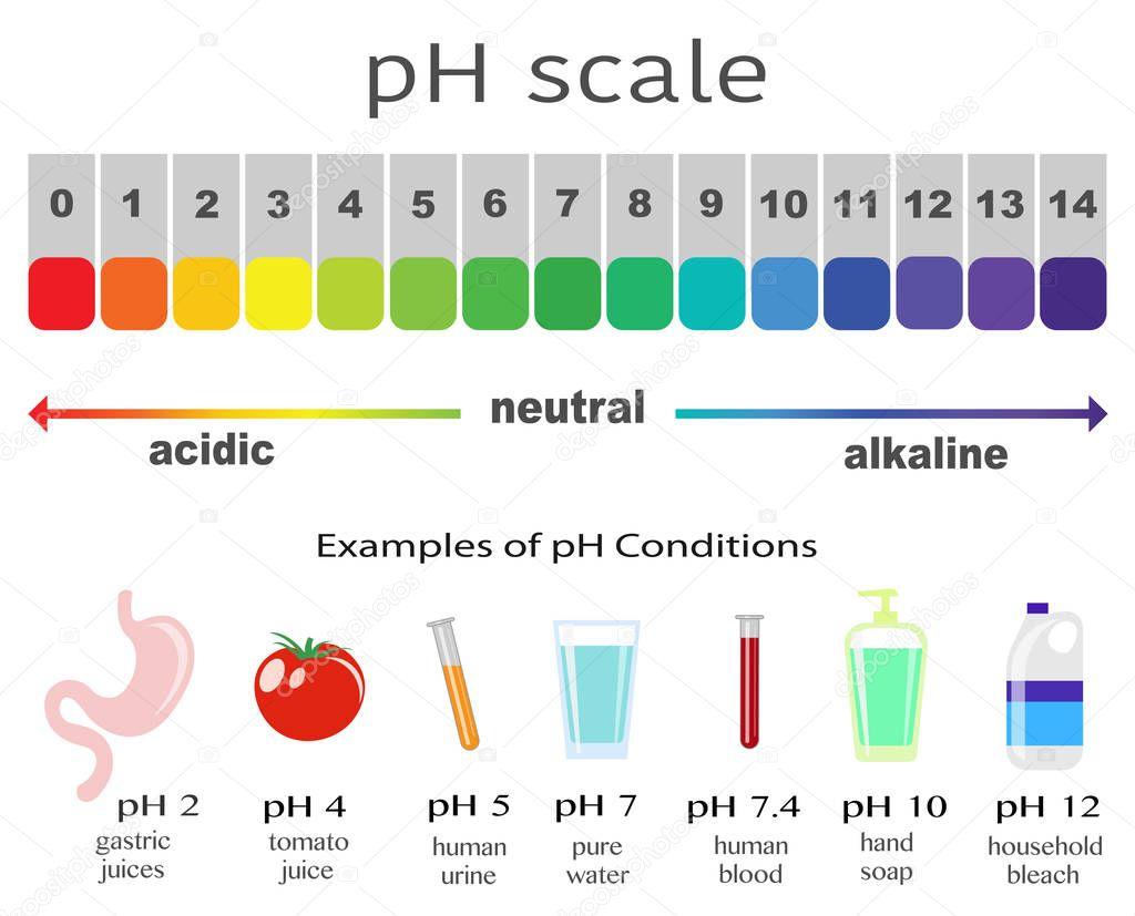 Escala De Valor De Ph Para Soluciones Acidas Y Alcalinas