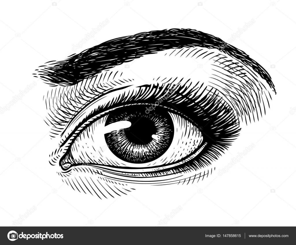Hand Drawn Beautiful Female Eye Sketch Makeup Beauty
