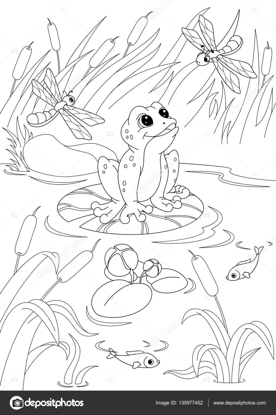 Malvorlage Teich Mit Frosch