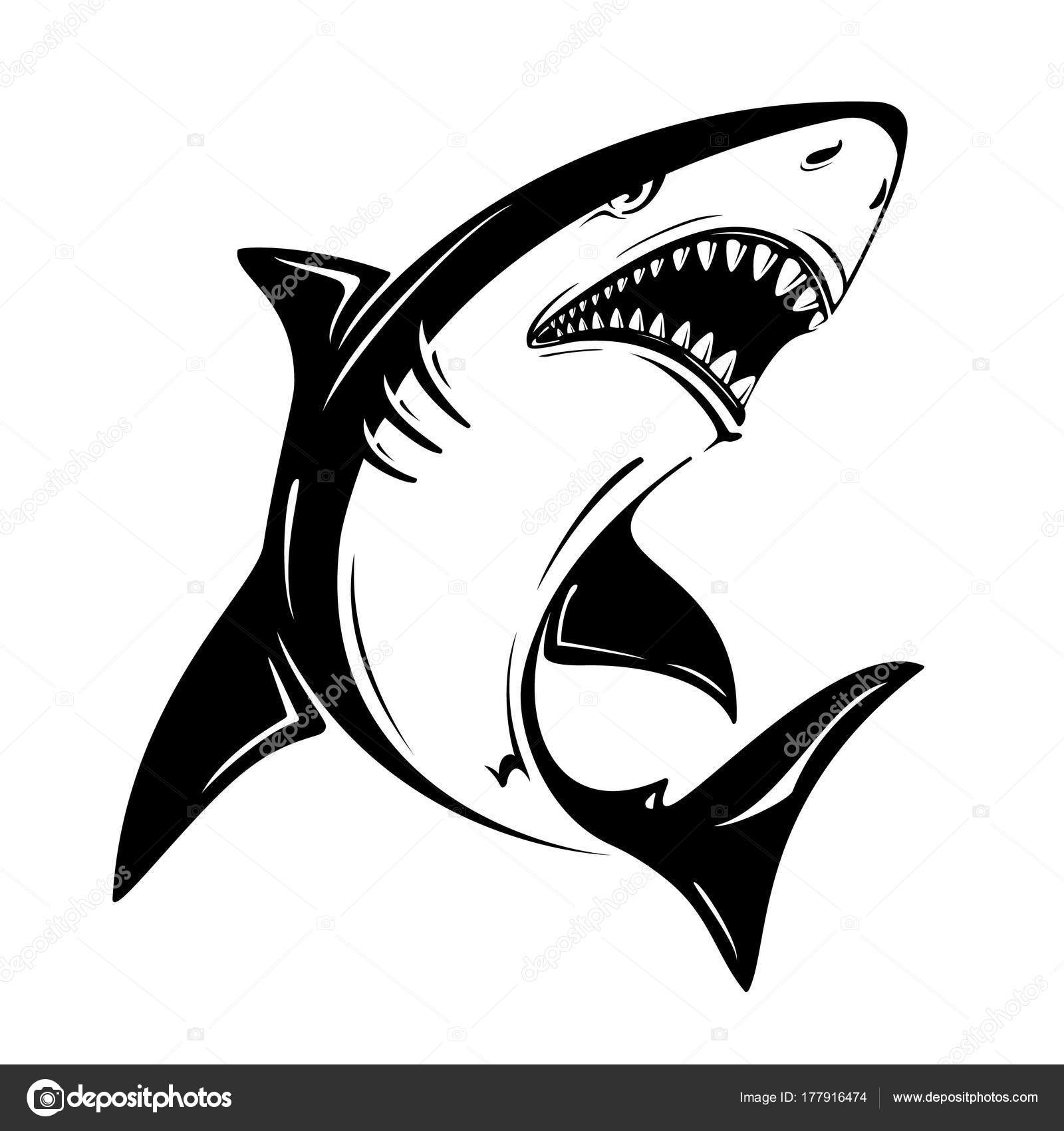 Angry Black Shark Vector Illustration Isolated On White