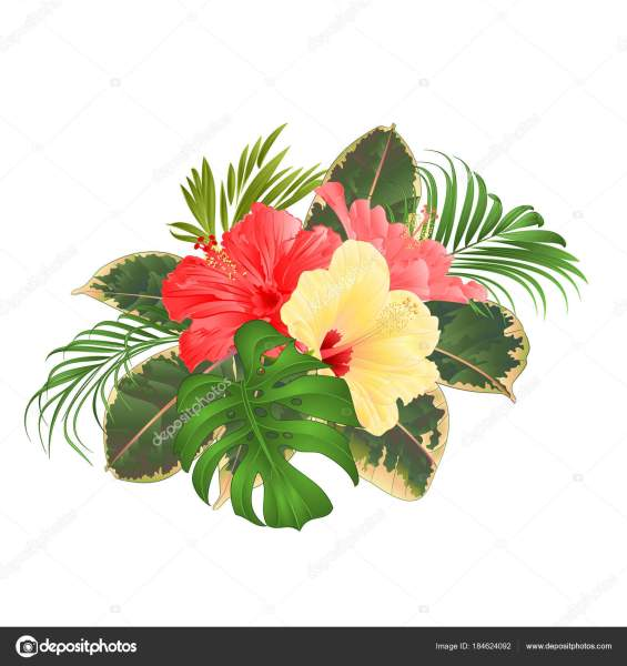 Bouquet Tropical Flowers Hawaiian Style Floral Arrangement Beautiful     Bouquet Tropical Flowers Hawaiian Style Floral Arrangement Beautiful Pink  Yellow     Stock Vector