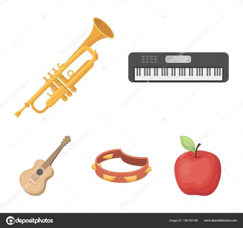 electro organ, trumpet, tambourine, string guitar. musical