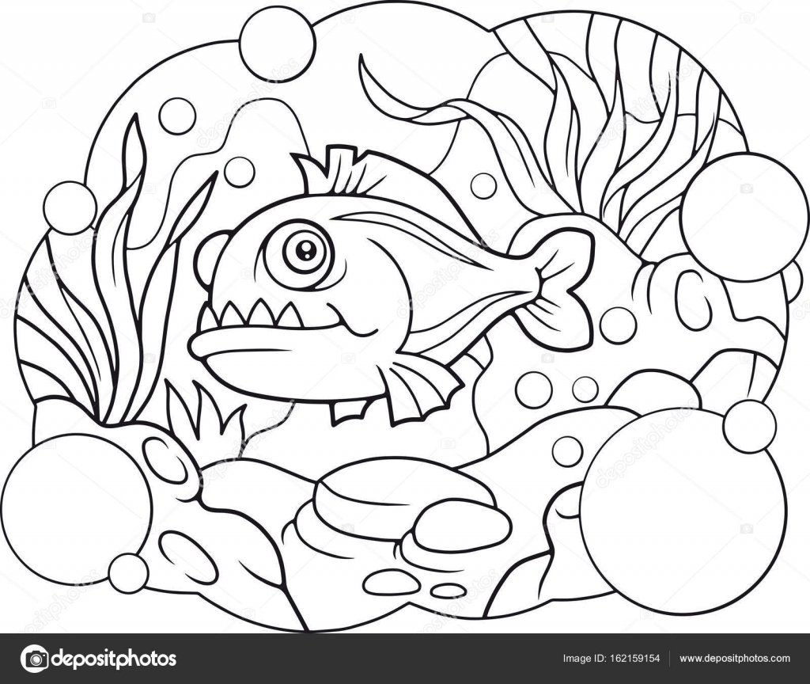 Dibujo Pirana Piranas Piranha Vector