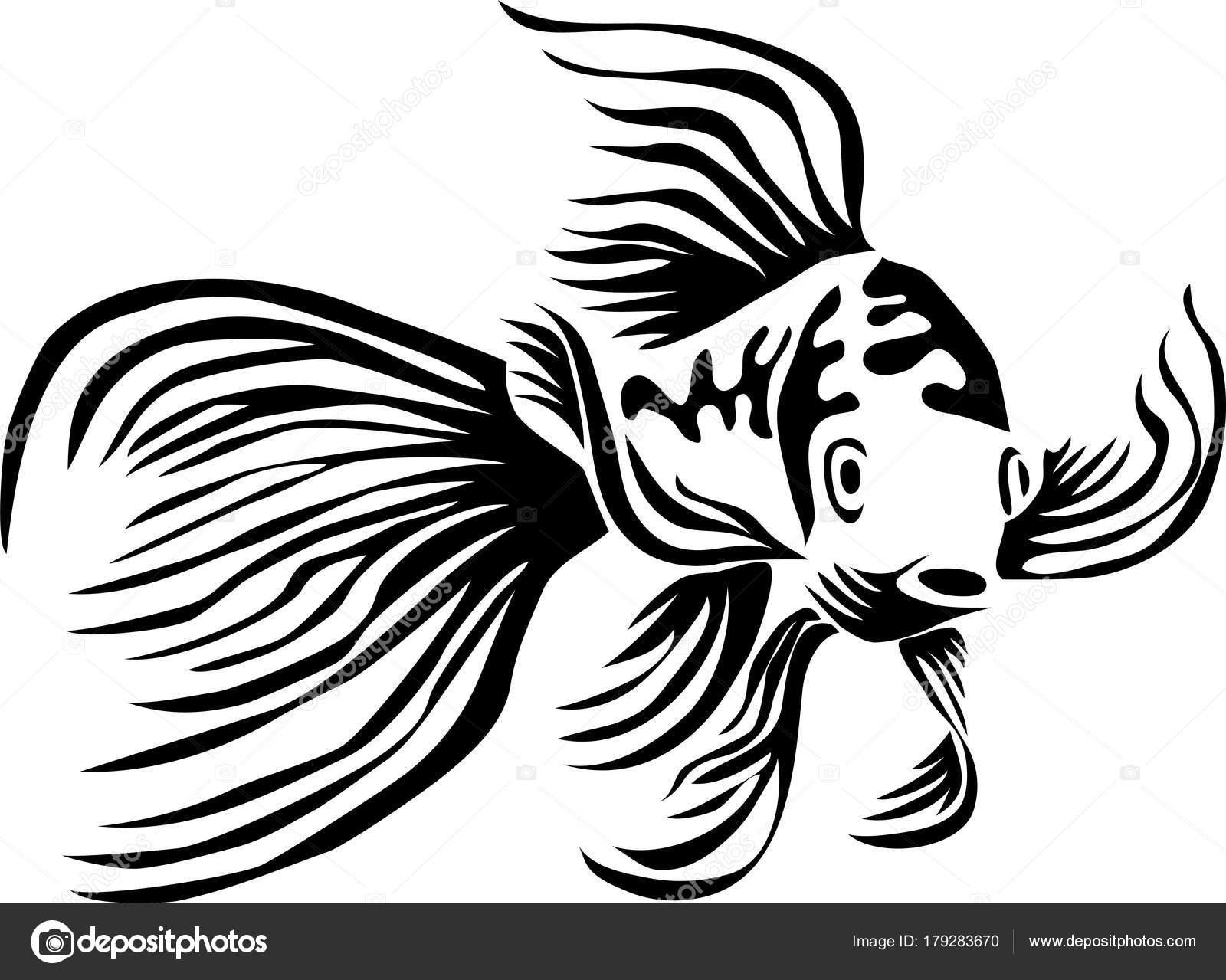 Preto E Branco Peixes Ilustracao Stock Ilustracao De Branco