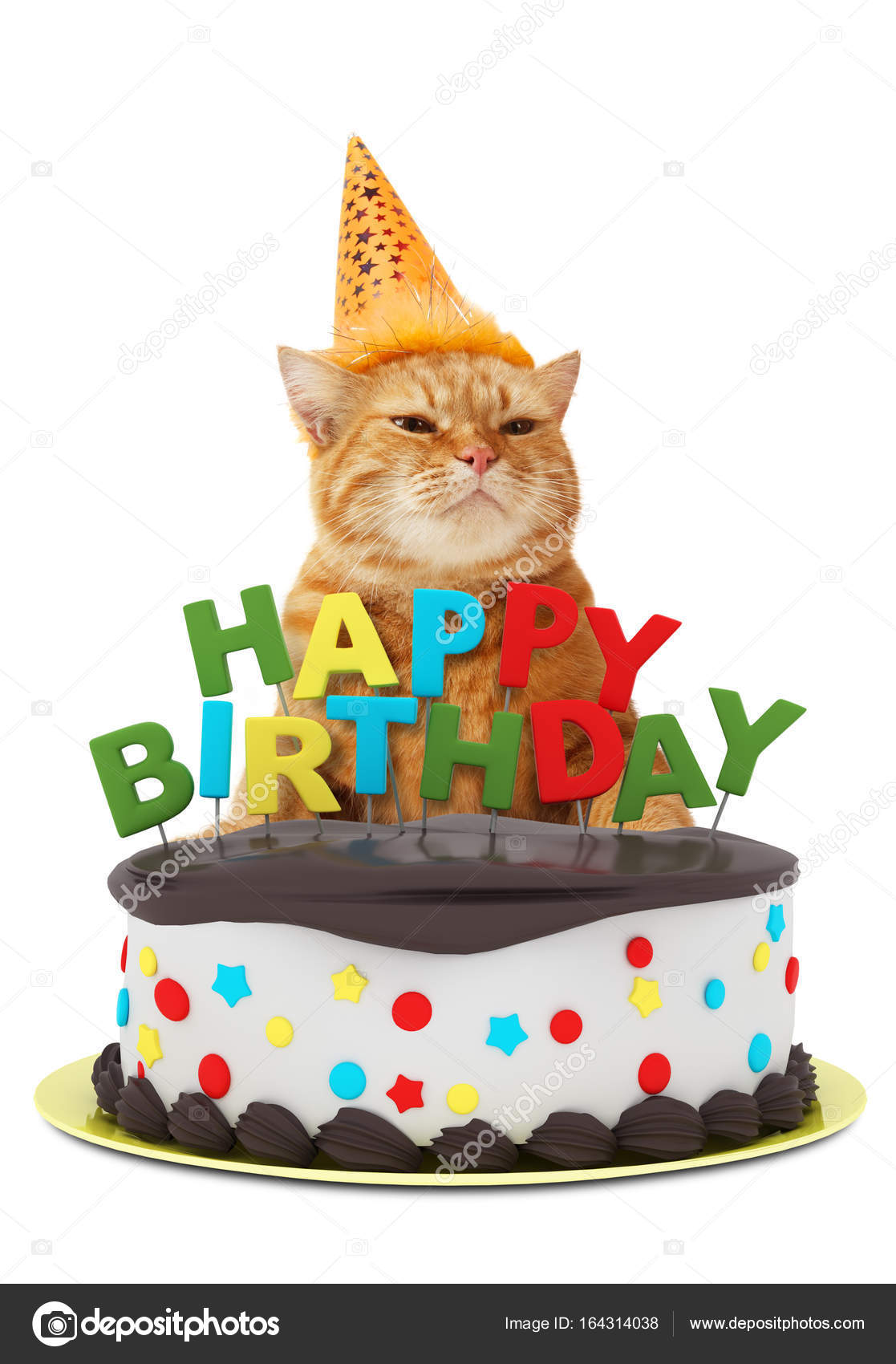 Funny Cat With Happy Birthday Cake Wearing A Party Hat Isolated On White Background Stock Photo Image By C Funny Cats 164314038