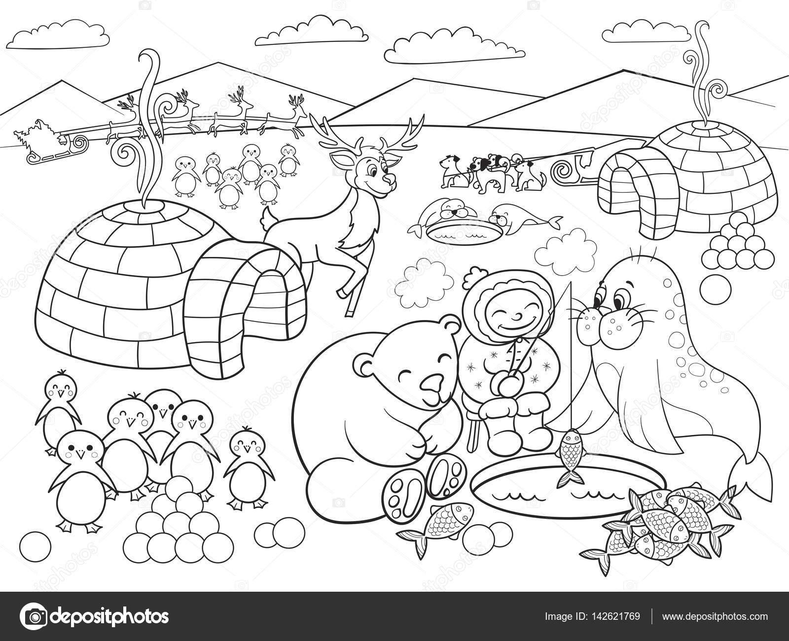Ilustracin De Vector De Polo Norte Para Colorear A Los