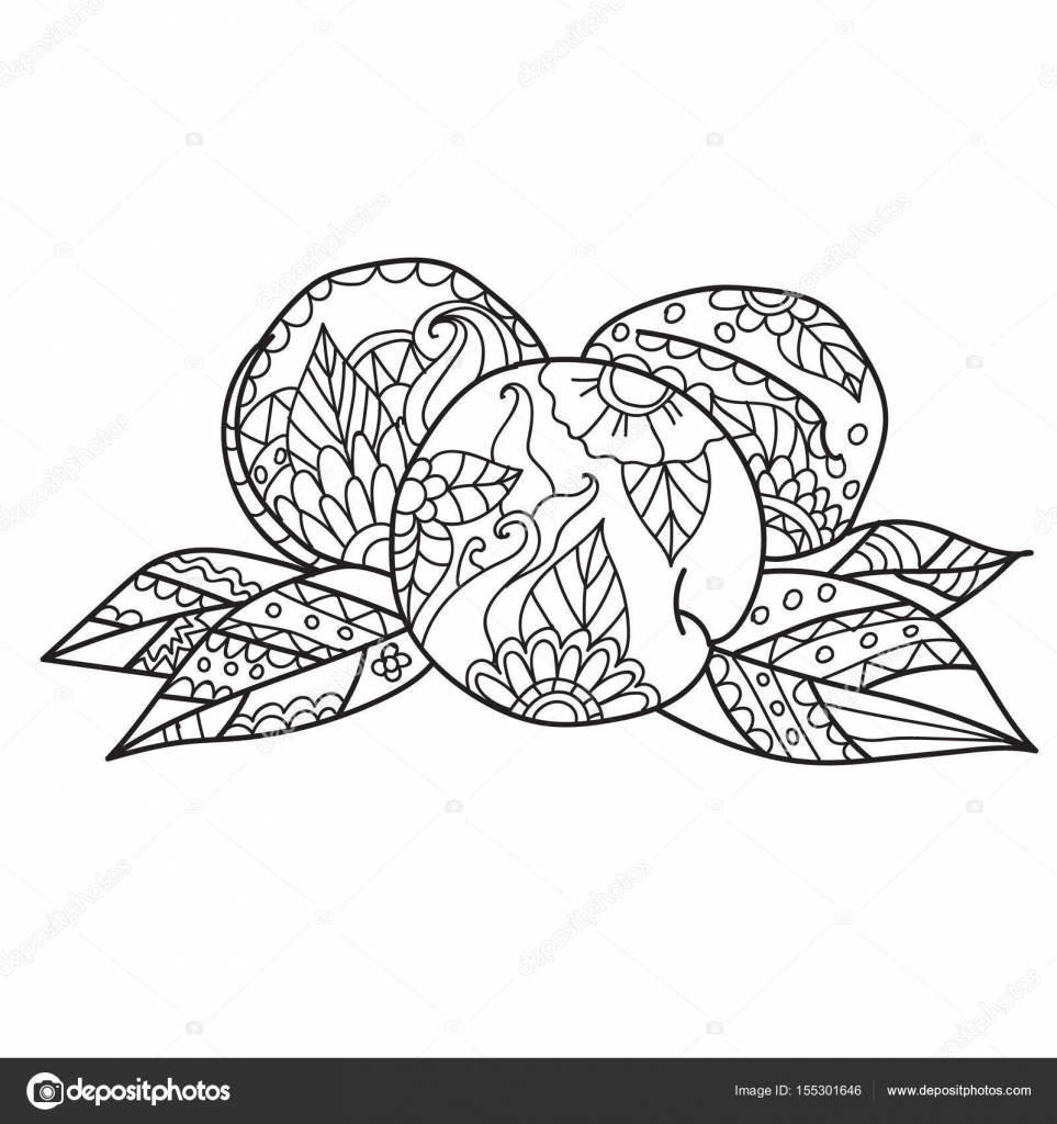 Coloring Pages For Adults Hand Drawn Sketch Style Peach Ripe