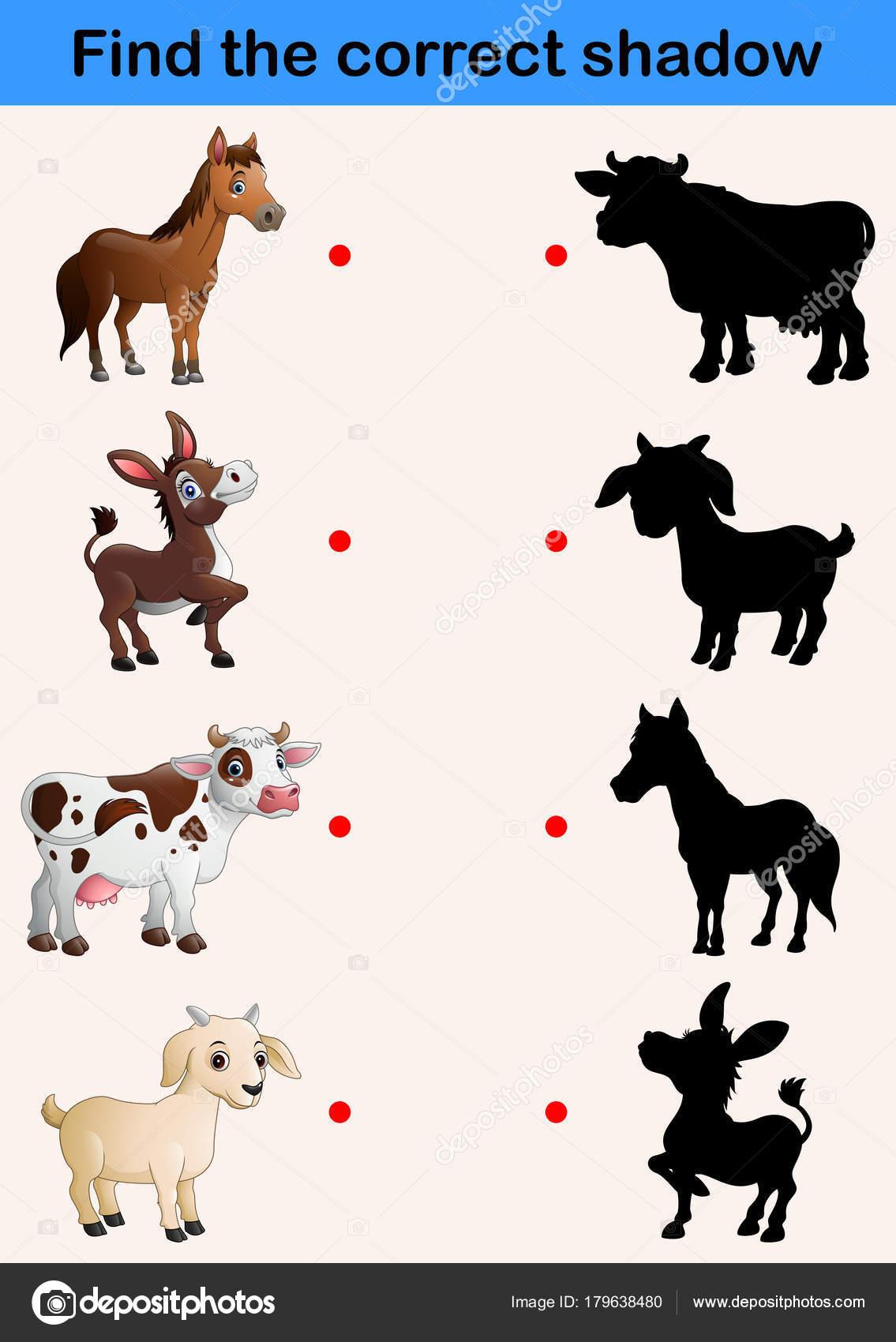 Imagenes Sombras De Animales De La Granja