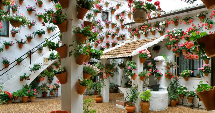 das festival der patios von cordoba