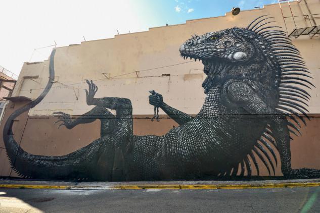 Iguana en Puerto Rico / © ROA
