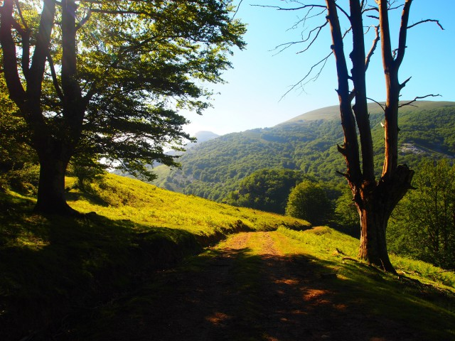 Parque Natural del Gorbeia