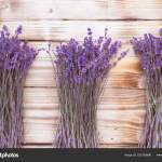 Three Lavender Dried Flowers Bouquets Wooden Desk Top View Stock Photo C Gshanshin 223120998
