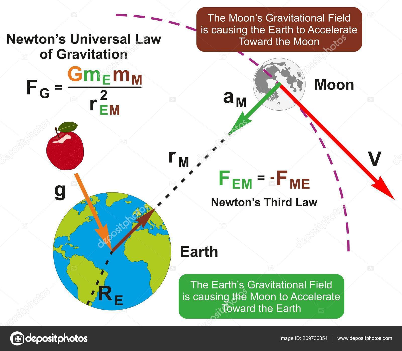Diagrama Infografia Ley Universal Gravitacion Newton Con