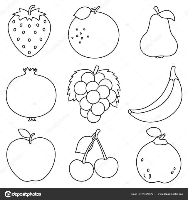 Vector Illustration Fruits Coloring Page Stock Vector Image by