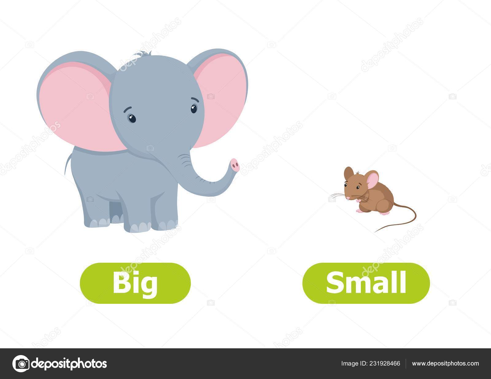 Images Big And Small Cartoon