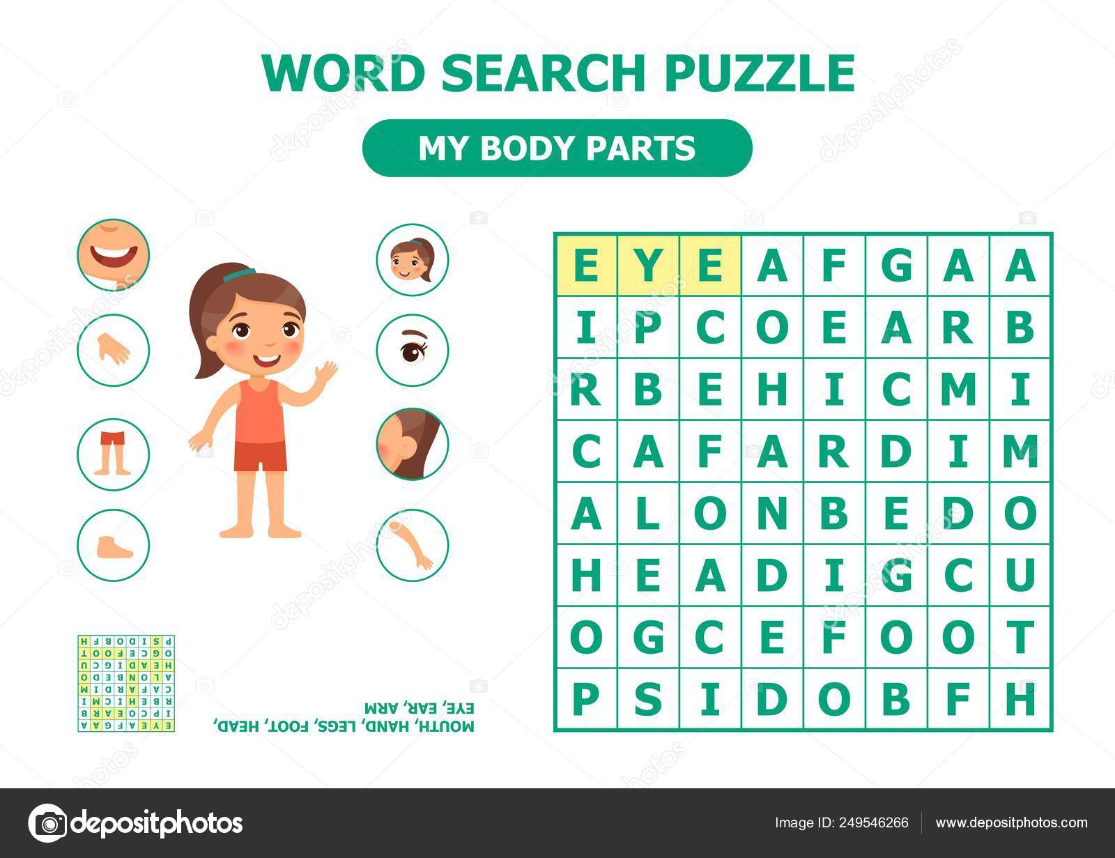 Word Search Puzzle Body Parts Anatomy Children Cartoon