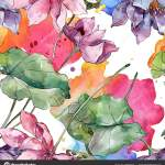 ᐈ Lotus Watercolor Stock Photos Royalty Free Lotus Watercolour Images Download On Depositphotos