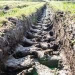 Tractor Tire Tracks Green Grass Mud Spring Stock Photo C Martinsvanags 200263280