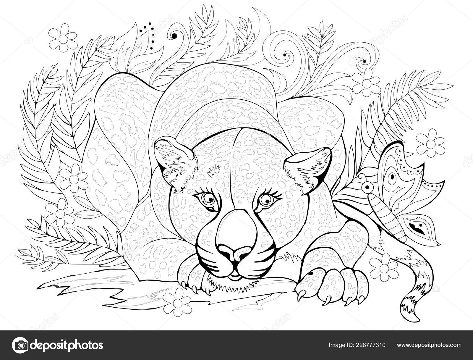 Jungle Drawing Black And White