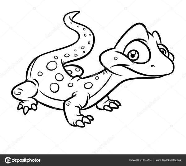 lizard coloring page # 55