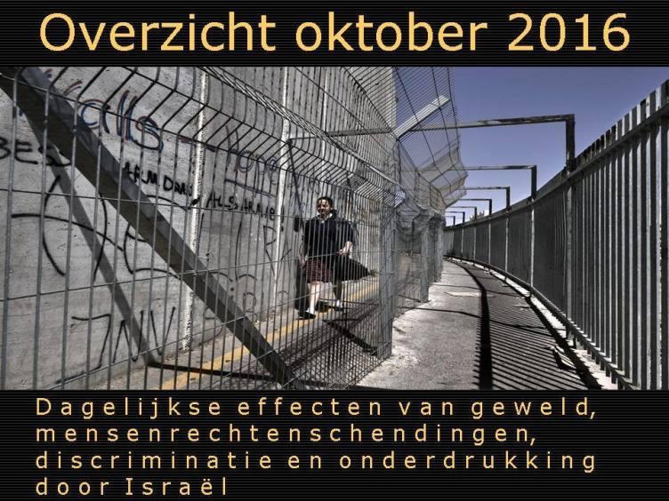 okt-nl-groot