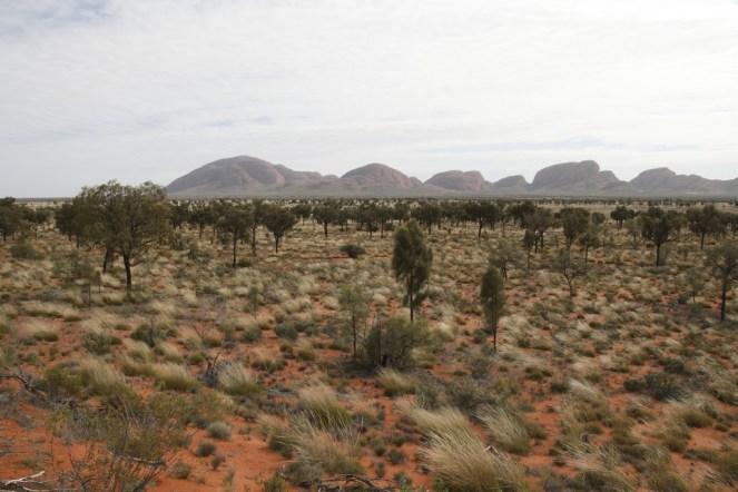 australia001