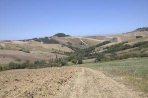 Urbino2011_48