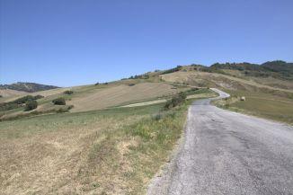 Urbino2011_50