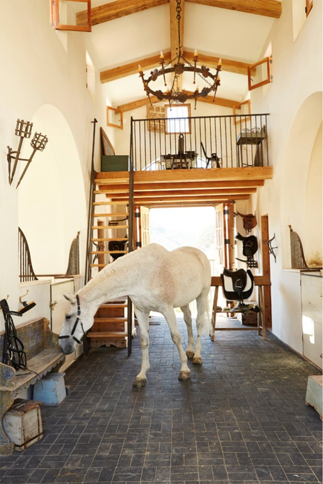 A horse inside the stunning barn