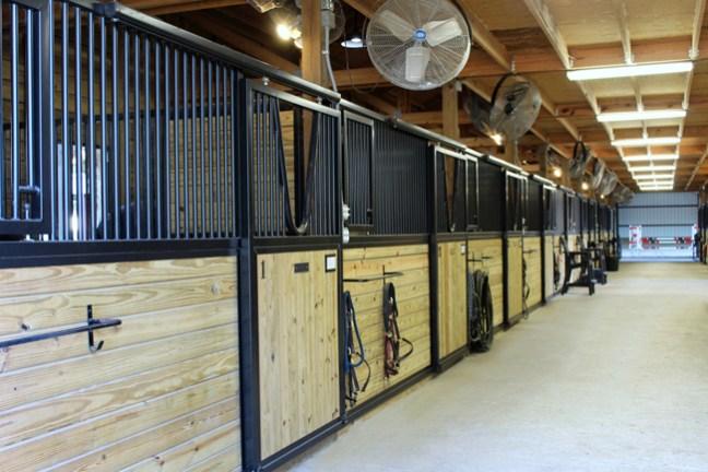 brand new stalls inside the barn