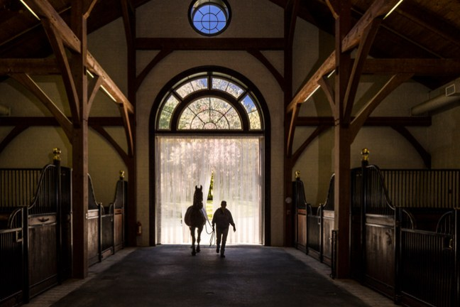 dramatic barn entrance
