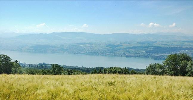 view onto Lake Zurich